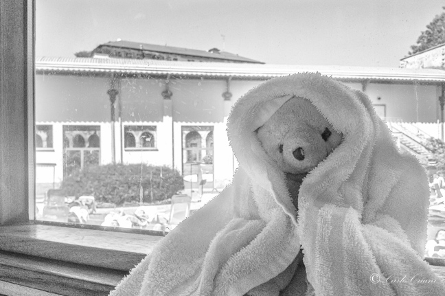 Teddy alla SPA