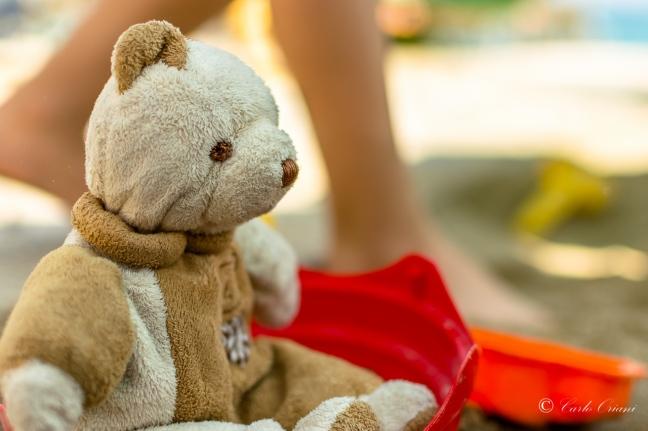 Teddy in spiaggia