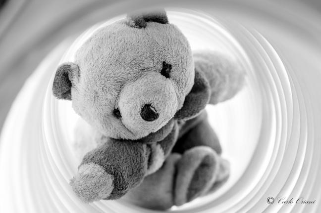 Teddy nel tubo