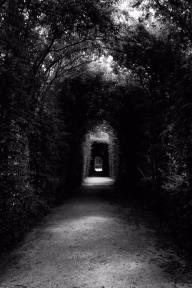 Faccio fatica a starle dietro. Dove mi starà portando? Cosa ci sarà alla fine di questo particolare tunnel?